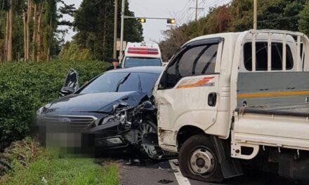 제주 교통사고 발생률 전국 최고 수준
